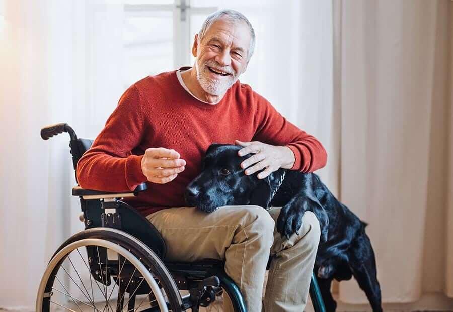 Kerekesszékes idős úr a kutyáját simogatja
